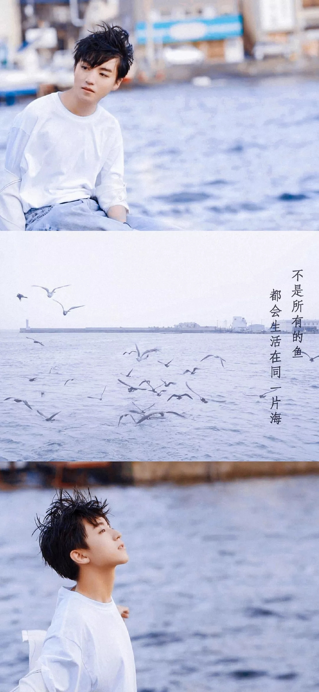 王俊凯壁纸三格拼接高清原图 阳光帅气