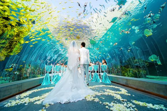 海底婚礼元素怎么样一般多少钱?海底主题婚礼现场效果图