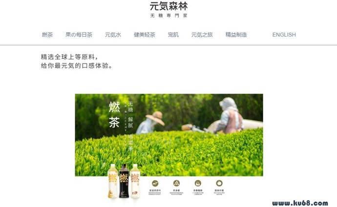 元気森林_元气森林:创新型无糖饮料品牌