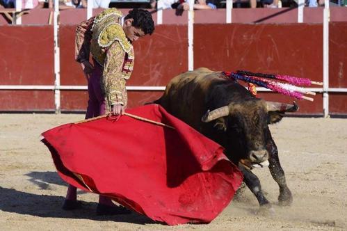 斗牛士在斗牛时为什么要用红布?