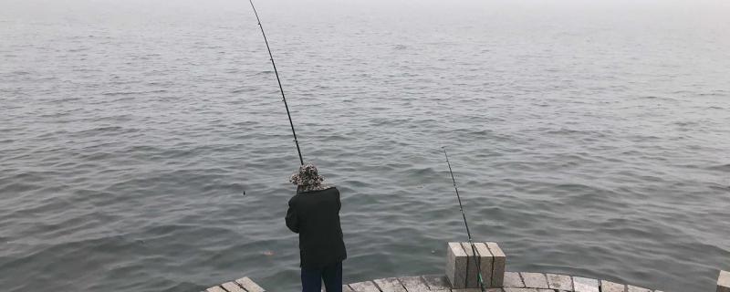 海里钓鱼好钓吗,钓浮还是钓底