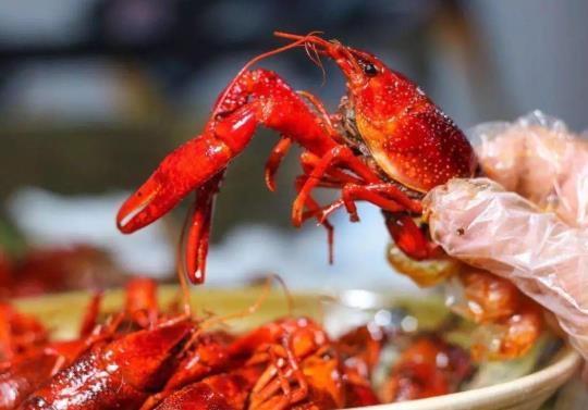 4斤小龙虾够几个人吃?小龙虾一次可以吃几只?