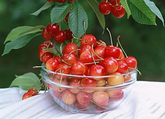 樱桃着色不均的原因是什么?夏天樱桃放冰箱好还是在外面好?