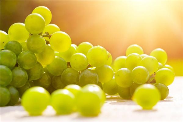 葡萄怎么洗才干净,葡萄上的白怎么洗干净