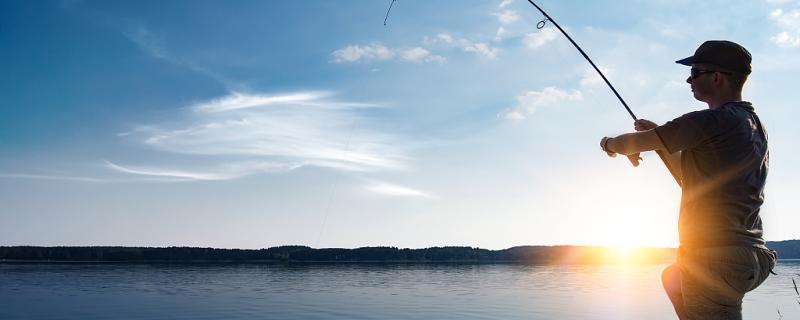 鸡肝能钓海鱼吗,能钓淡水鱼吗