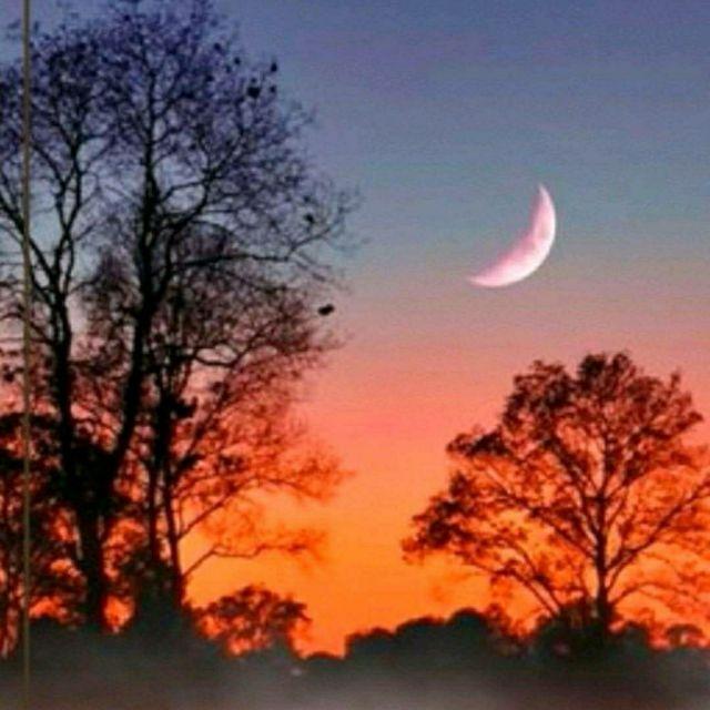 想你的时候问月亮原唱,党明毅演唱!