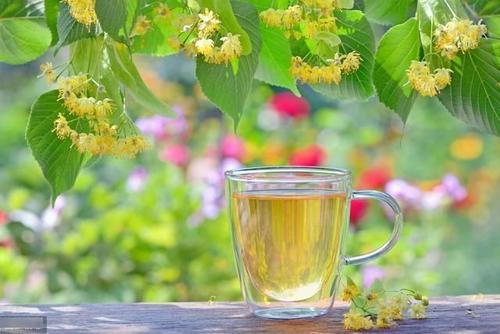 健脾祛湿,健脾祛湿喝什么茶?