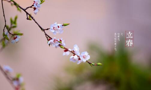 立春的含义是什么意思,春天来了的意思!